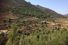 Vallei omgeving Pinos